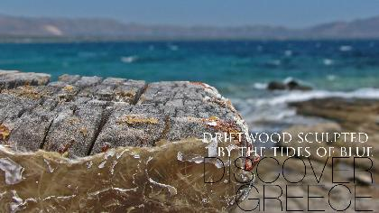 . . .Driftwood Sculpted By The Tides Of Blue . . .