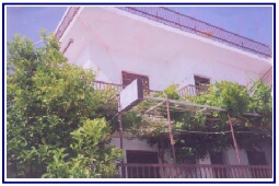 AMPELOS STUDIO